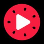 西瓜视频去广告升级版